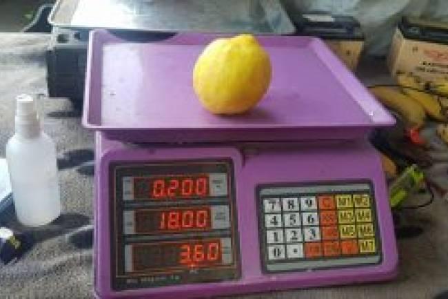 مواطنون يشترون الخضار والفواكه بالحبة.. تعرف على أسعارها