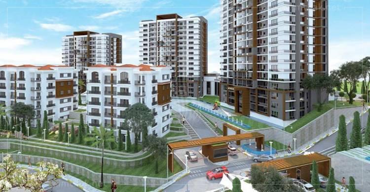 شركة مصرية تدرس تنفيذ مناطق تطوير عقاري بريف دمشق